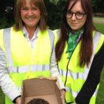 yorkshire building society rescue hedgehog