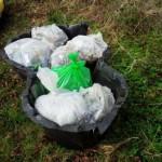 Wilmslow Clean Team April 2016 Litter In Pond Liner
