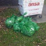 Wilmslow Clean Team Spring Clean 2017 Sinsburys